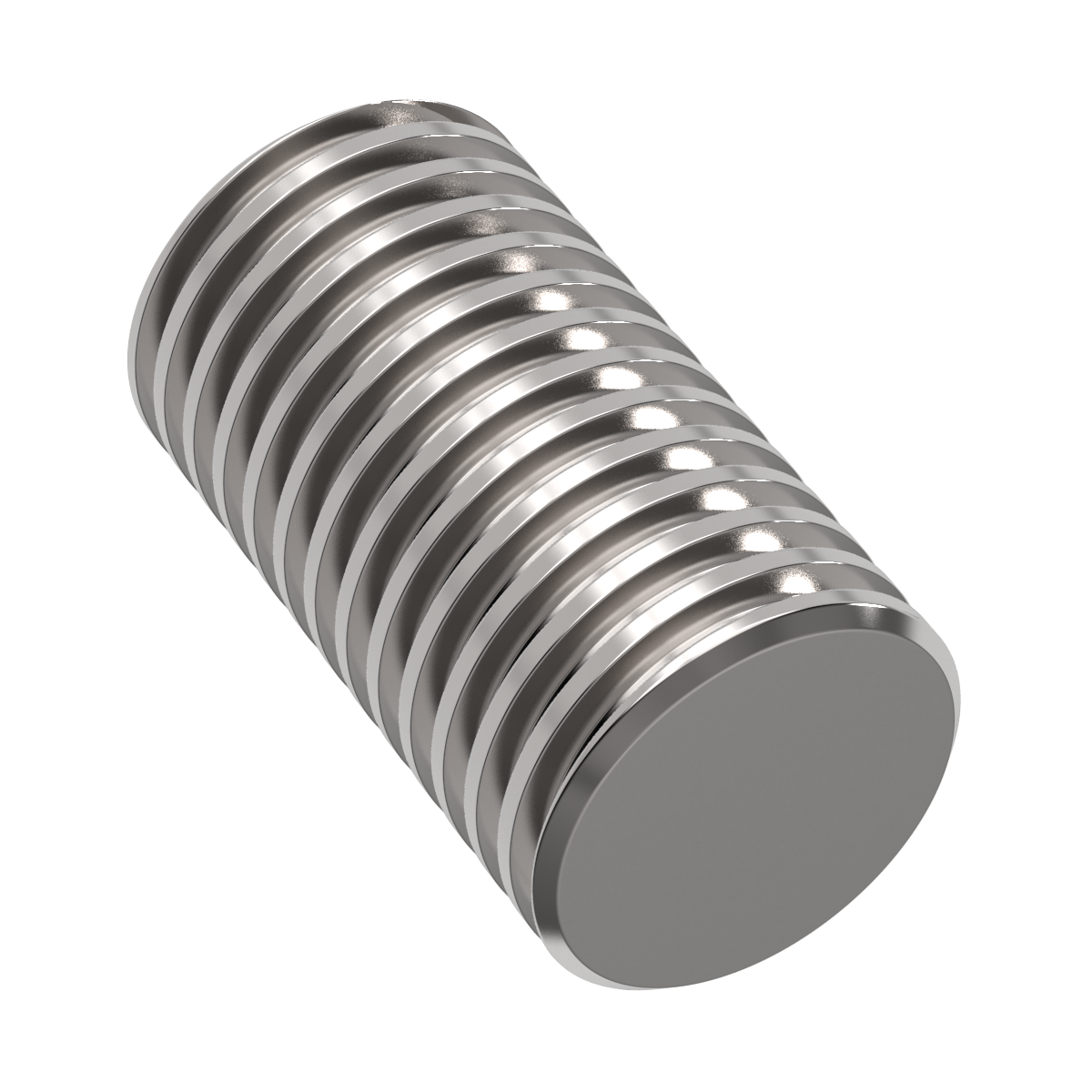 100100RS Lead Screw